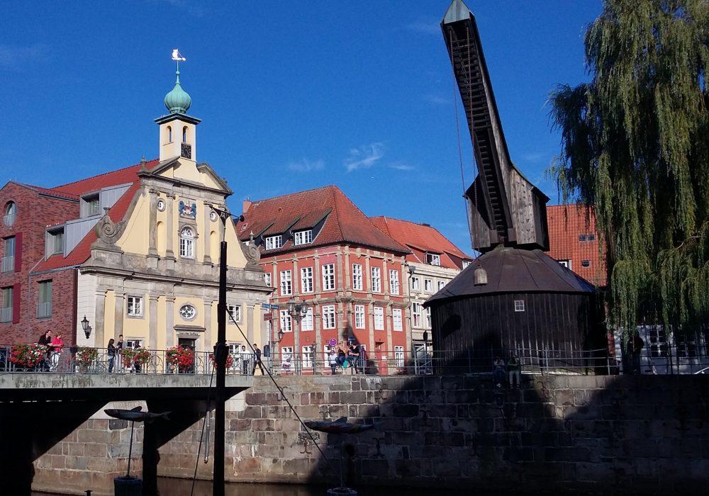 Lüneburg Stint
